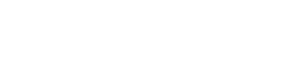 Logo Flinois blanc